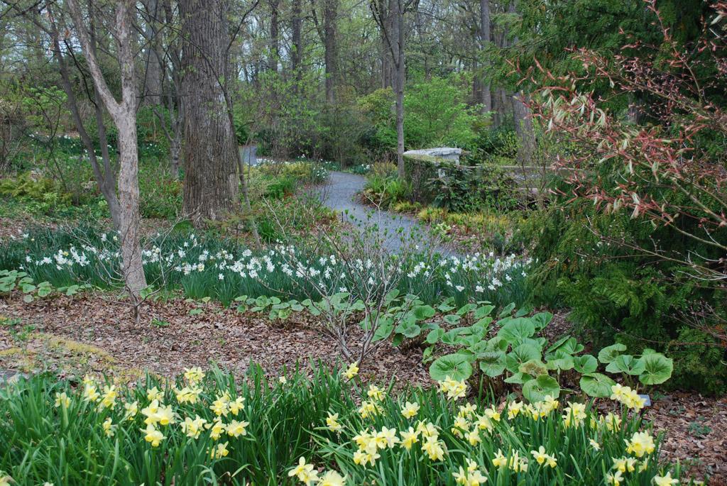 gardenlandscapecostellonl01